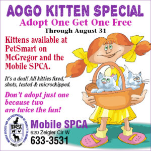 MOBILE SPCA BEGINS AOGO KITTEN SPECIAL (ADOPT ONE GET ONE)